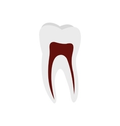 Human tooth icon vector