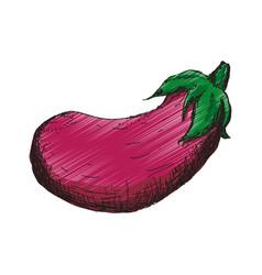 Eggplant vegetable hand draw vector