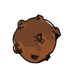 meteor rock cartoon vector image