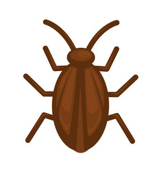 Cockroach in brown color isolated on white graphic vector
