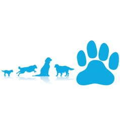 dog paw vector image vector image