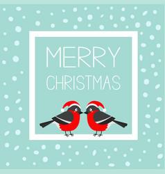 merry christmas greeting card bullfinch winter vector image