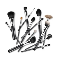 Makeup concealer powder eye shadow brow brushes vector