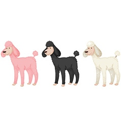 Puddle dogs with different color fur vector
