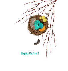 birds nest with eggs vector image