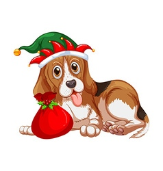 Christmas theme dog wearing party hat vector