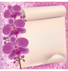 Invitation or greeting card with purple orchid vector image