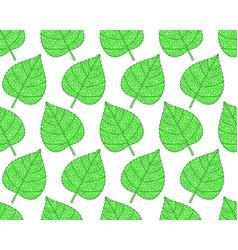 Plant leaf pattern vector
