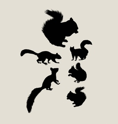 Squirrels silhouettes vector