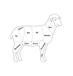 Lamb Meat Thin Line Farm Animal vector image