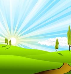 landscape fields vector image