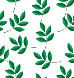a pattern of green branches vector image