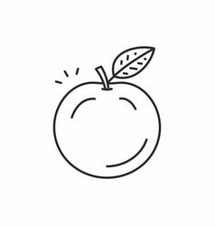 apple icon vector image