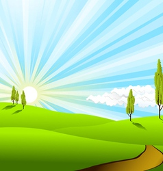 landscape fields vector image vector image