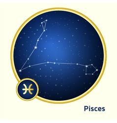 Pisces constellation vector