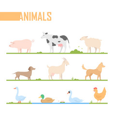 set of farm animals - modern cartoon vector image