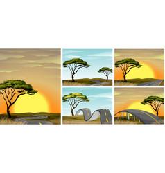 Road scenes in savanna field at sunset vector