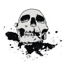 Skull mud splatter vector