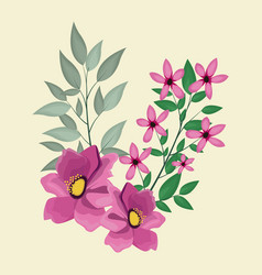 Anemone decoration leaves nature vector