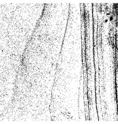 Original Noisy Texture vector image vector image