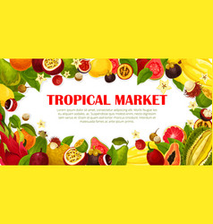Poster of exotic fruits for tropical market vector