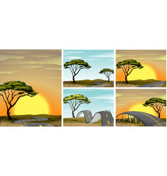 road scenes in savanna field at sunset vector image vector image
