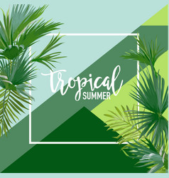 tropical palms summer banner graphic background vector image