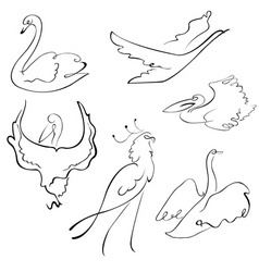 birds sketches vector image vector image