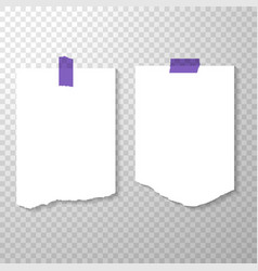 Blank torned off pages with purple stickers torn vector
