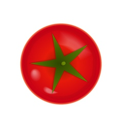 Tomato icon over white vector image