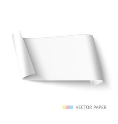 white paper roll long design for web banner vector image vector image