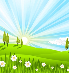 Landscape fields vector