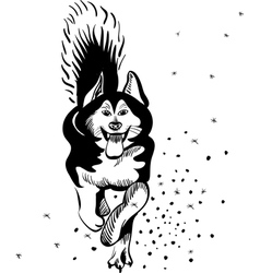 black and white sketch of a sled dog alaskan malam vector image