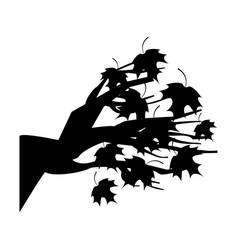 Tree branch floral icon vector