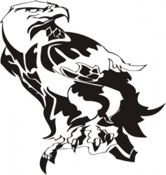 Eagle  predatory bird vector