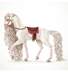 Beautiful white horse with a long mane and saddle vector
