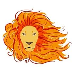 Lion wild vector