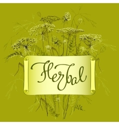Label template with herbs vector