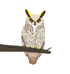 Owl sits on a tree branch vector