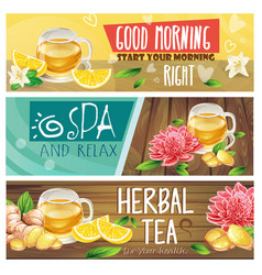 relaxing morning herbal tea banners set vector image vector image