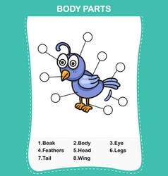 Nightingale vocabulary part of body vector