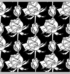 graphic pattern of roses vector image