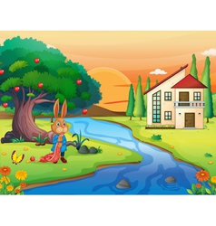 A rabbit in nature vector