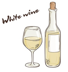 Hand drawn of bottle and glass of white wine vector