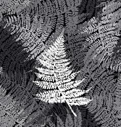 Fern seamless pattern vector image