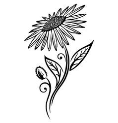 Sunflower summer vector image vector image