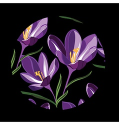 Floral pattern with crocus hand-drawing vector image vector image