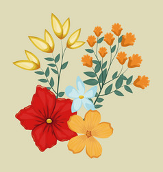 flowers ornament floral decoraiton vector image vector image
