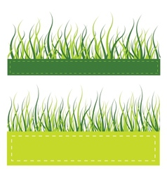 Green grass card vector