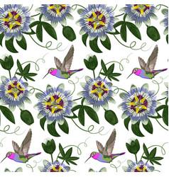 Hummingbird and passiflora seamless pattern vector